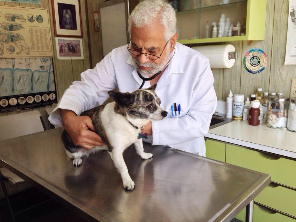 broadway vet hospital   veterinarians   land park