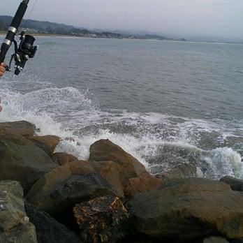 Pillar point harbor 262 photos 76 reviews rafting for Half moon bay pier fishing
