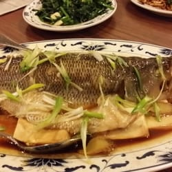 Little dragons chinese restaurant 45 photos chinese for Steamed whole fish