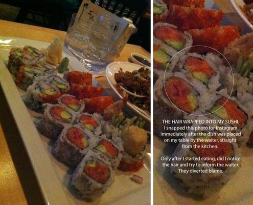 Jin s asian cuisine sushi bar wellesley ma yelp for Asian fusion cuisine and sushi bar