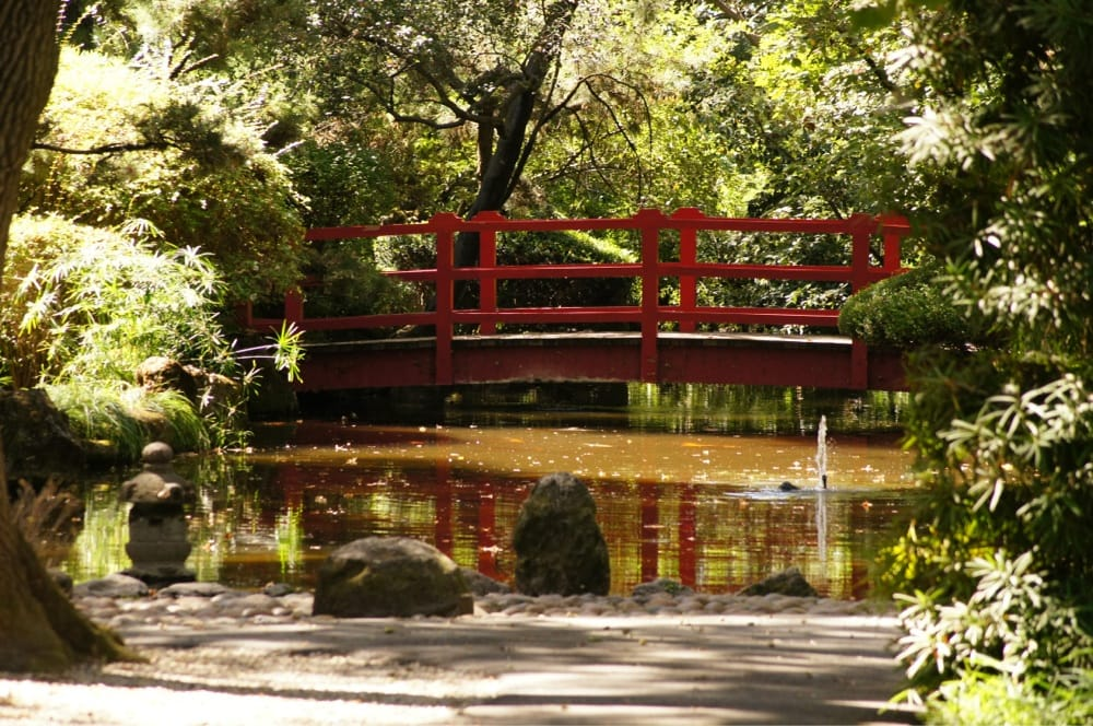 Photos For Japanese Garden In Micke Grove Park