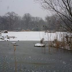 Ein Teil des Zooschaufensters im Winter