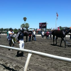 CalExpo Harness Racing - Thoroughbred racing during the State Fair. - Sacramento, CA, Vereinigte Staaten