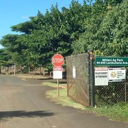 A farm e i e i ooo lori i left tips and reviews on for Koi farm near me
