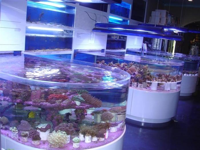 Ocean Treasures Aquarium Closed Aquariums Mission