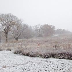 Schweitzer Woods Dog Park - Snow day! - West Dundee, IL, Vereinigte Staaten