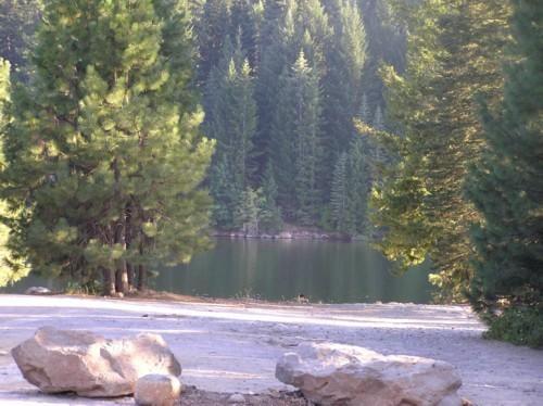 Beautiful for a swim or horror film yelp for Lake siskiyou resort cabins