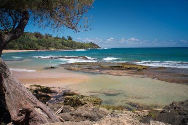Kauai Photo Tours Kapaa Hi Verenigde Staten Yelp