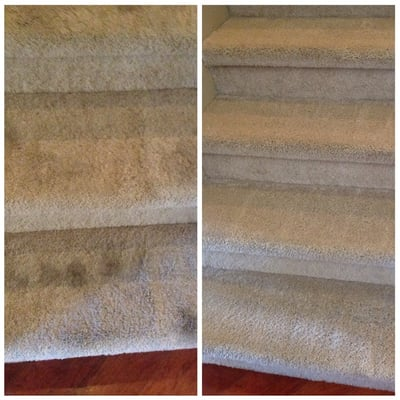 Abc Carpet Amp Tile Cleaning Carpet Cleaning Elk Grove