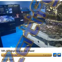 Pisces reef fish emporium 14 photos pet stores for Fish store las vegas