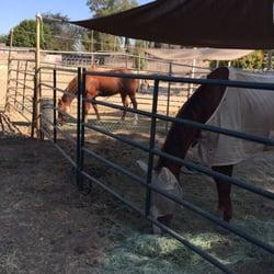 Anna Baker Horsemanship - The stable - Lemon Grove, CA, Vereinigte Staaten