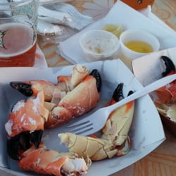 Stone crab baby!