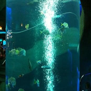 Aquarium Restaurant 158 Photos Seafood Restaurants