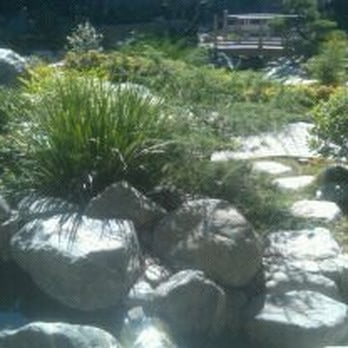 James Irvine Japanese Garden 58 Photos Park Forests Little Tokyo Los Angeles Ca