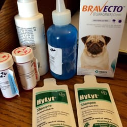 veterinary care center   los angeles ca vereinigte staaten hooked