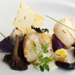 aqua nueva seared scallops with blue potato mushroom and leek cream