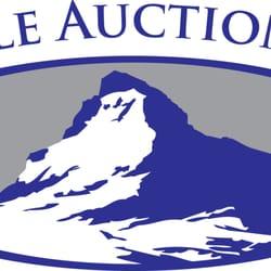 Pinnacle Auction Group logo