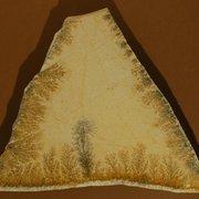 Piedra Solnhofen Fosil irregular para…