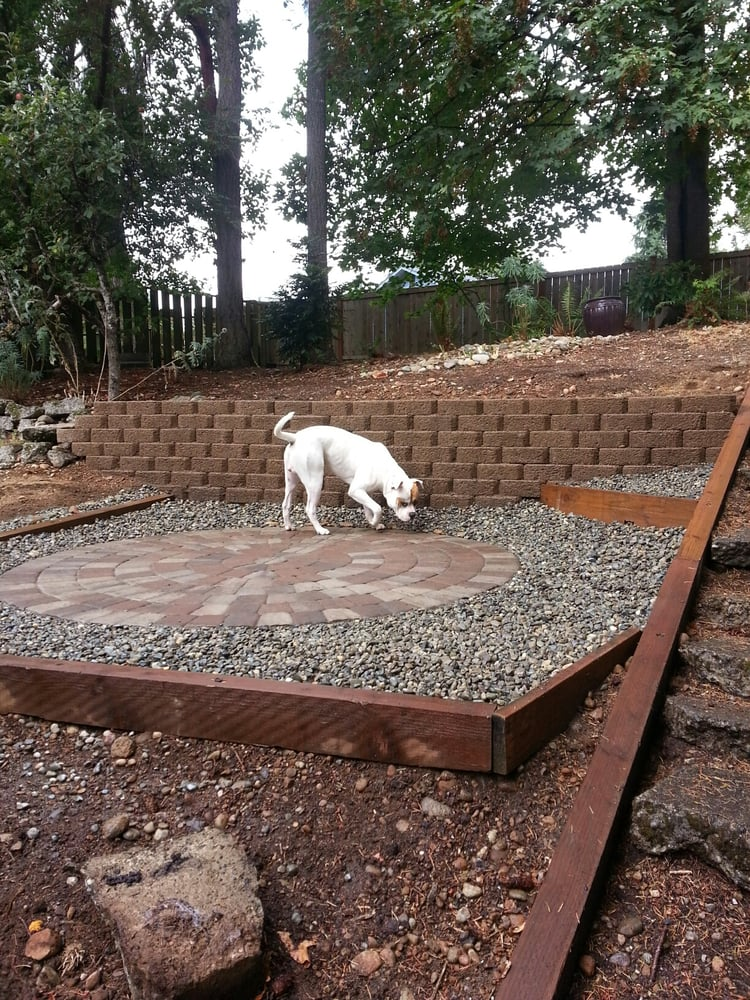 Pup checking out the new patio