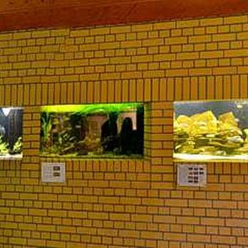Gruson Gewächshäuser - 10 Fotos - Botanischer Garten - Magdeburg, Sachsen-Anhalt - Beiträge - Yelp