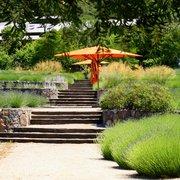 Matanzas Creek Winery - Terraced patio and lavander garden - Santa Rosa, CA, Vereinigte Staaten