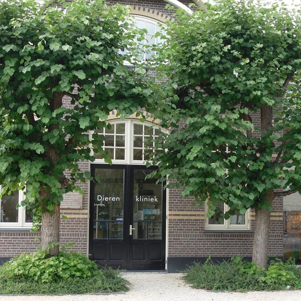 Abcoude Netherlands  City new picture : ... Veterinarians Abcoude, Utrecht, The Netherlands Reviews Yelp