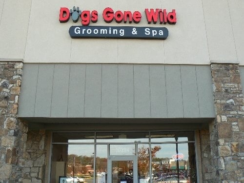 dogs gone wild grooming spa pet groomers bristow va reviews photos yelp. Black Bedroom Furniture Sets. Home Design Ideas