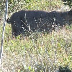 Wilder Ranch State Park