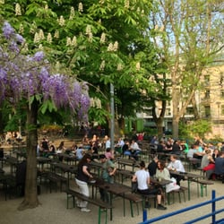 Der Stadtgarten blüht. So auch der…