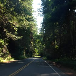 weott dating Weott, california is located in humboldt county zip codes in weott, ca include 95571 the median home price in weott is $1 which is roughly $1/per square foot.