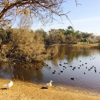 Central Park Dog Park Huntington Beach Ca