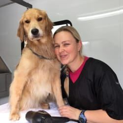 Dog Grooming Services Los Altos Ca