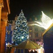 Der Weihnachtsbaum in 2012