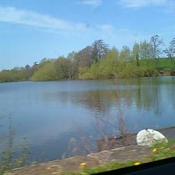 Delamere Forest Park, Northwich, Cheshire East