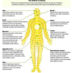 kansas topeka massage therapists