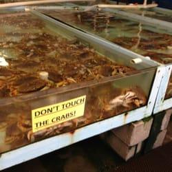 Alioto lazio fish company 20 photos seafood markets for San francisco fish market