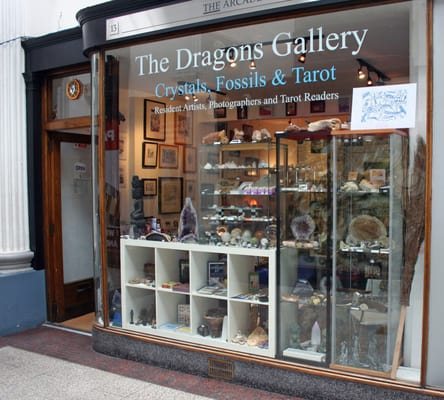 The Dragons Gallery Fossils & Crystals, Bristol
