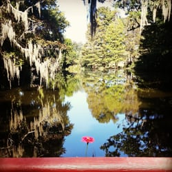Magnolia Plantation Gardens Part Of The Self Guided Garden Walk Charleston Sc United States