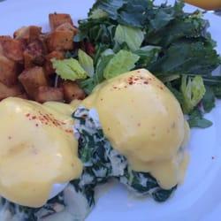 the backyard greek restaurants westwood westwood ca united