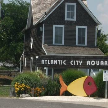 Atlantic City Aquarium 78 Photos Aquariums Atlantic