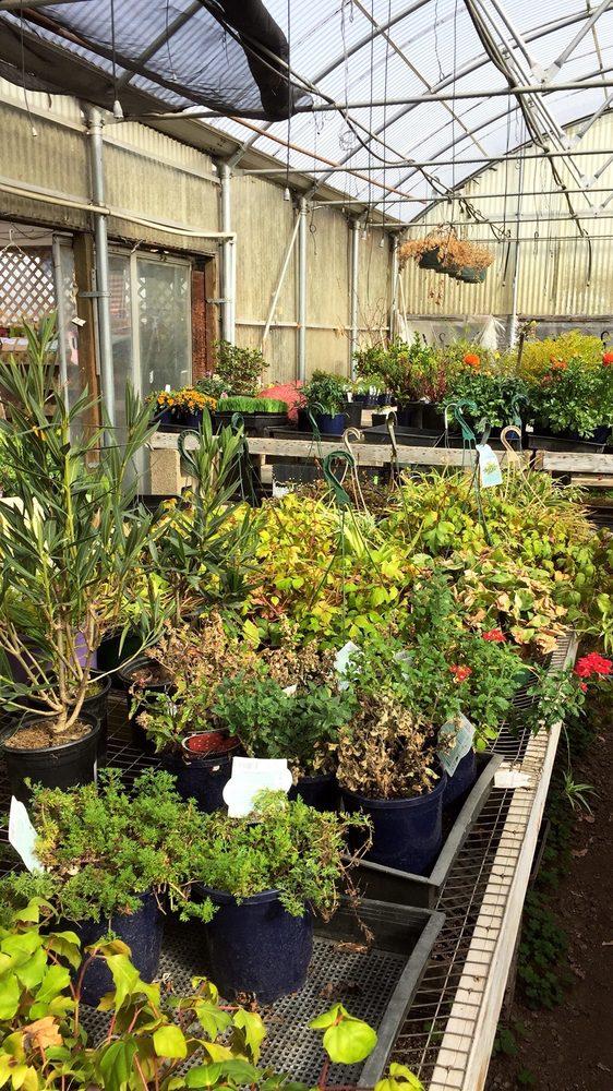 Garden Shoppe: 2327 Charles Ln, Medford, OR