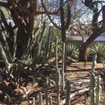 Moorten Botanical Garden 455 Photos 105 Reviews Botanical Gardens 1701 S Palm Canyon Dr