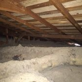 Photo of BGreen - Attic Cleaning u0026 Rodent Proofing - Oakland CA United States & BGreen - Attic Cleaning u0026 Rodent Proofing - 184 Photos u0026 97 Reviews ...