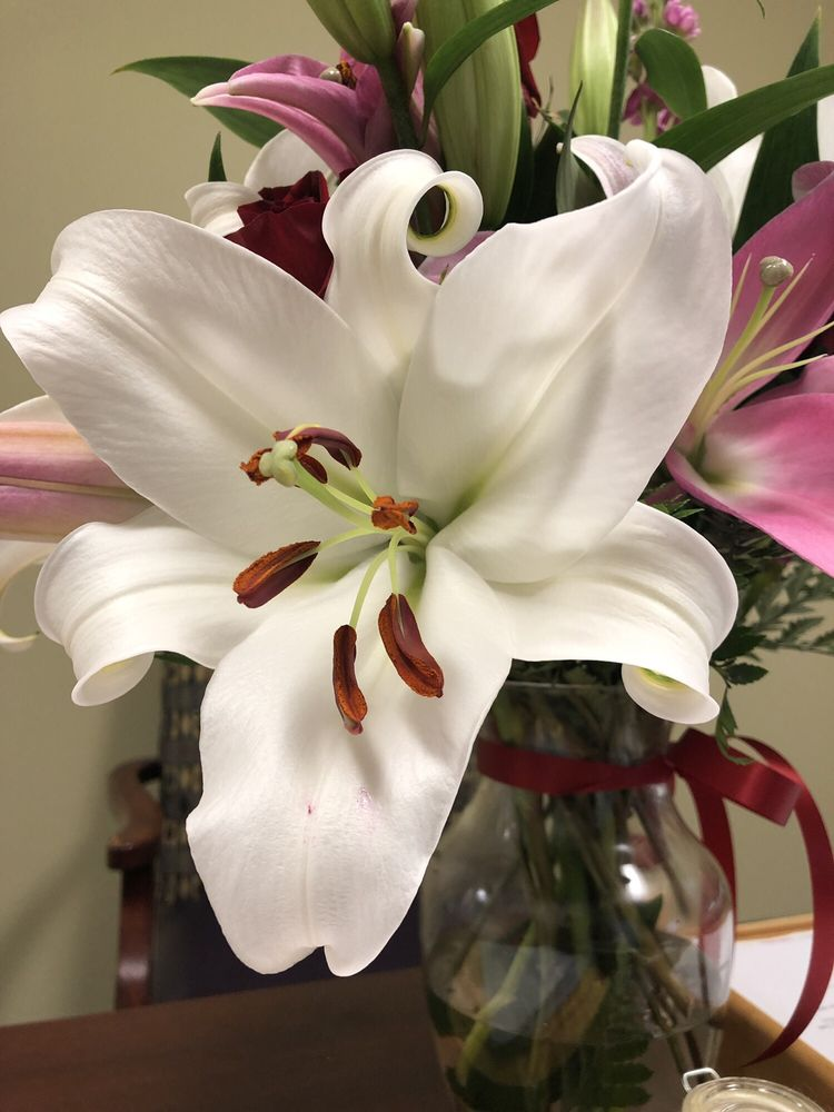 City Florist: 1900 Wimbleton Dr, Bedford, TX