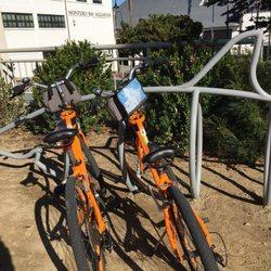 Workhorse Bicycles - 11 Photos & 31 Reviews - Bike Rentals