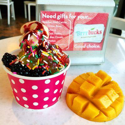Brrrberry Frozen Yogurt Rolled Ice Cream 409 Western Blvd