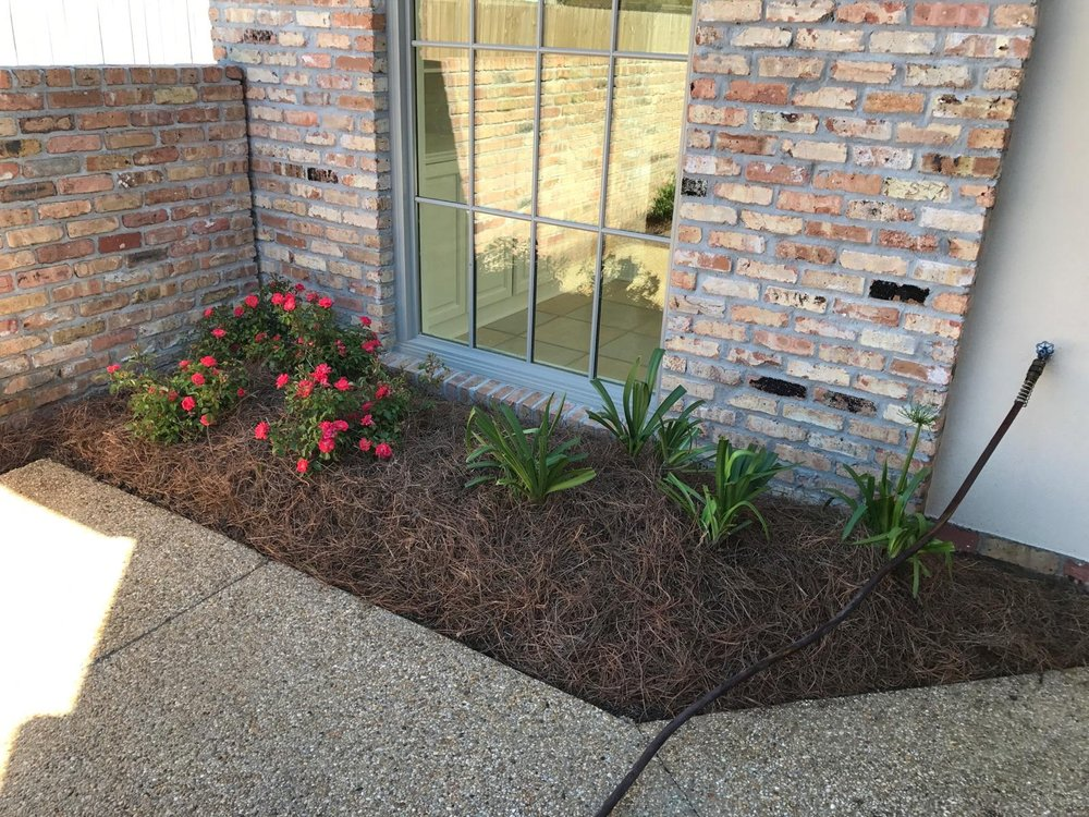 Simplify Your Lawn Care In Baton Rouge When You Need Help With Your