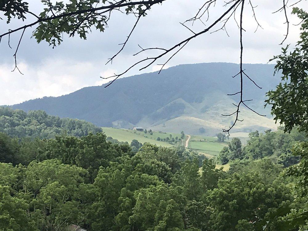 Foxtail Orchards: 148 Macky Ln, Tazewell, VA