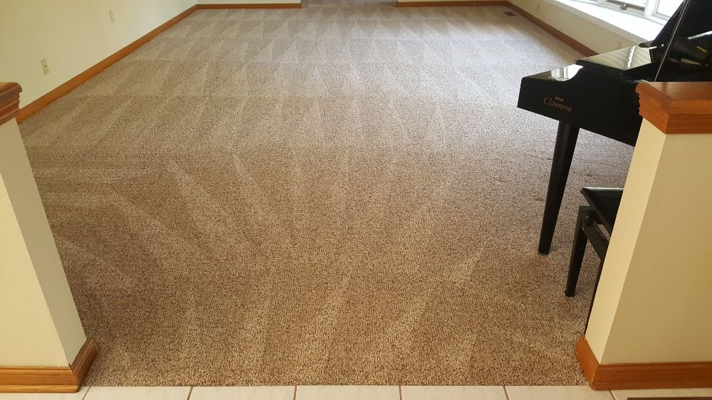 Wilson Carpet & Air Duct Cleaning: Toms River, NJ