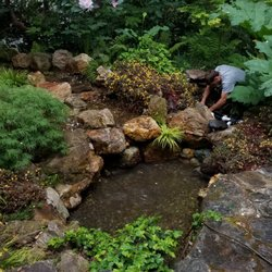 Bay Area Koi Ponds 55 Photos Landscaping Berkeley Ca Phone